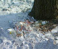 В Благовещенске свалку мед. отходов устроили «под окнами»